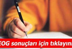 TEOG sınav sonuçları açıklandı - E- Okul TEOG YEP sınav sonuçlarını öğren