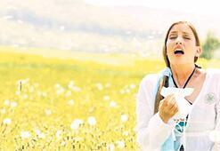 Bahar alerjisine karşı aşı tedavisi