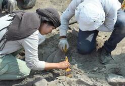 Hasankeyfte 11 bin 500 yıllık yerleşim yeri bulundu