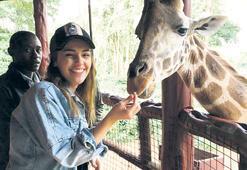 Yeni hayvanı zürafa