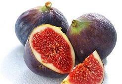 5 yıl sonra incir yiyemeyeceğiz
