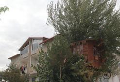 Ağaç evin yürek burkan öyküsü