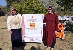3 kovan ile işe başlayan ev hanımı yılda 1.5 ton bal üretiyor