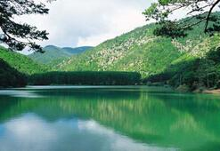 Borobay Gölüne terapi ormanı