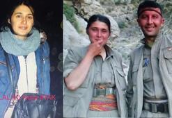 Son dakika: PKKlı kadın terörist Zelalı Aşil yakaladı