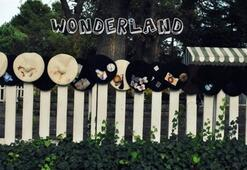Wonderland Accessories