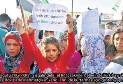 Tel Rıfatlılar 'Türk Aslanları'nı bekliyor