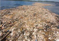 Karayiplerde plastik kirliliği inanılmaz boyutlara ulaştı