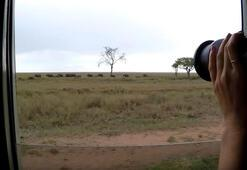 Saklı cennet Tanzanya