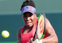 Venus Williams çeyrek finalde