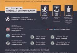 Terör örgütü PKKya sonbaharda ağır darbe