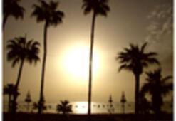 Altın kumlu plajlar...