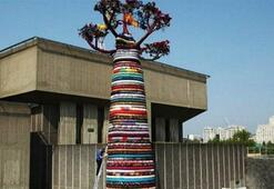 Serap Pollarddan Olimpiyat Ağacı