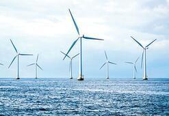 'Deniz rüzgârı' için 3 aday var