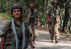 Son dakika: PKKya büyük şok Birer birer ölüyorlar