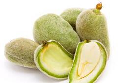 Çağla Badem ve besin değerleri