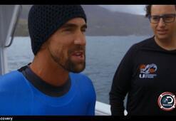 Michael Phelps, beyaz köpekbalığına 100 metrede yenildi