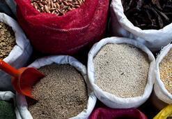 Mucize bir besin grubu:Baklagiller