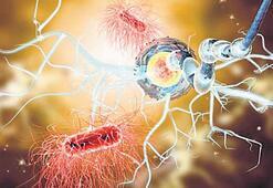 MS tedavisinde kök hücre dönemi