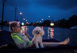 ABDde Harvey Kasırgası: En az 5 ölü