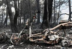 Zeytinköyde 50 ev ve 250 hektar orman kül oldu