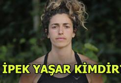 Survivor İpek Yaşar kimdir Gönüllüler takımı...