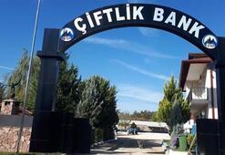 Çiftlik Bank soruşturmasında son dakika gelişmesi: Mehmet Aydın'ın eşi tutuklandı
