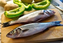 Çiğ balığın zararları