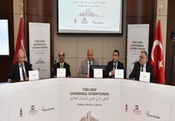 Arap yatırımcılara örnek proje