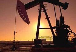 Ankaradan müthiş petrol hamlesi