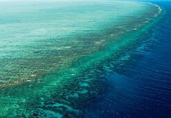 Büyük Set Resifi sanılandan büyük
