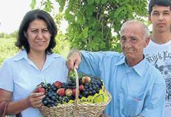 Sezonun ilk üzümü Kılıçdaroğlu için