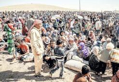 Cilvegözü'nden giren 400 Suriyeli başlattı