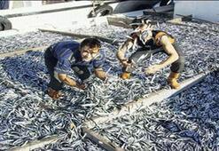 TZOBdan balıkçılara rastgele