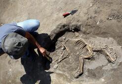 Vanda 3 bin yıllık köpek iskeleti bulundu