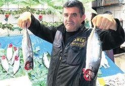 Fischerei macht dieses Jahr nicht glücklich