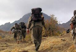 Son dakika: Hezimete uğrayan YPGnin durumu Karayılanı çılgına çevirdi