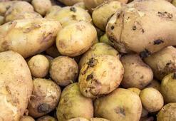 12 yaşındaki çocuktan patatesle hayat dersi