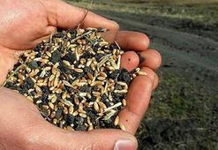 Türkiyenin tohum üretimi bir milyon tonu aştı