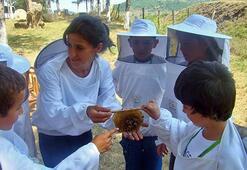 Türkiyenin en mülayim Tüp bebek arıları
