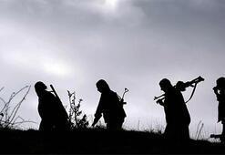 Vernichtungsschlag gegen PKK-Lager