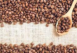 Ejder meyvesi tamam Mersin kahvesi yolda