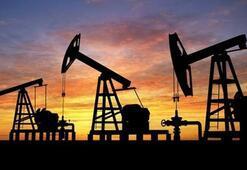 ABDnin petrol üretimi son 43 yılın en üst seviyesinde