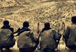 Avrupadan PKKya her yıl 30 milyon euro geliyor