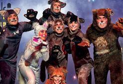 Boğaziçi Oyuncularından Kediler Sokağı Müzikali