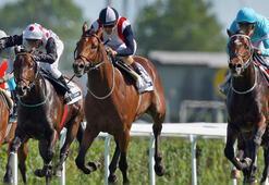 At yarışları özelleştirilecek