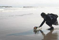 En ünlü sahil artık anıt mezar