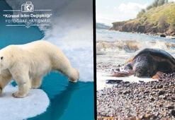İklim değişikliği bu fotoğraflarda
