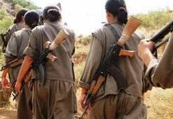 İrandaki PKKlılar PYDye desteğe gidiyor