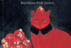 Yalvaç Ural kediler için yazdı